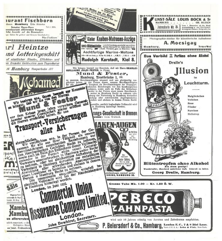 Ausgezeichnet Tasmanischer Teufel Anatomie Ideen - Anatomie Ideen ...